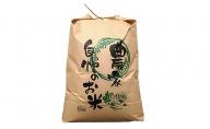 福井県若狭町コシヒカリ10kg【訳あり】(一等米)【令和2年産】(たごころ農園)