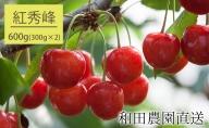 和田農園のさくらんぼ『紅秀峰』北海道仁木町産