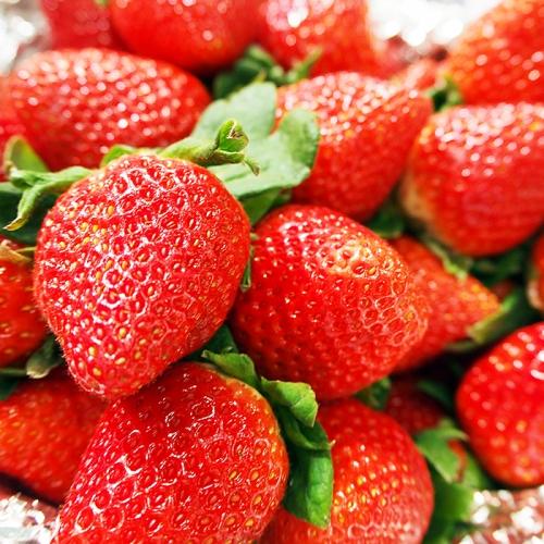 A−160.佐賀県産いちごさん 240g×2パック | au PAY ふるさと納税