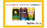 【定期便5ヶ月】よなよなエールと軽井沢高原ビールのクラフトビール飲み比べセット 3種24本