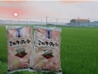 TC‐0411 特別栽培米の新米ミルキークイーン10kg (11月発送分)