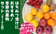 田舎の頑固おやじが厳選!はちみつ漬けにおすすめ 季節の果物セット
