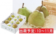10~11月最高級 大玉「ラ・フランス」約3kg(特秀7~11玉)【山形洋梨】