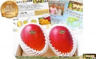 高糖度15度以上厳選!!西表島アナナス農園の完熟 アップルマンゴー 約700g