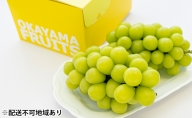 ご家庭用 岡山県産 シャインマスカット 2~3房(約1.2kg)