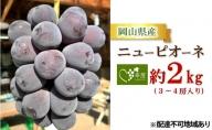 吉備高原朝採り ニューピオーネ 約2kg(3~4房入り)