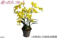 綺麗で丈夫な三河陶器で贈る光触媒オンシジューム3本立(茶色の陶器×黄色の花)H100-017