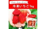 BI08_摘みたて!便利な小分け!冷凍いちご1kg(500g×2)