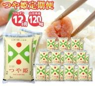 ST0002 【12回定期便】特別栽培米つや姫 10kg×12回(計120kg) JS