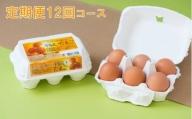 D1319【12回定期便】12ヶ月連続!こだわりの平飼い卵 合計360個(30個×12回)