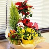 K1697 【花の定期便】1年中季節のお花を楽しめる!旬のお花盛り合わせ