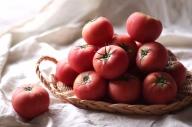 訳あり この道40年の農家から直送 完熟!桃太郎トマト6~9玉 H139-002
