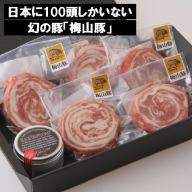 D1147 幻の豚「梅山豚」ロールステーキ6個セット(トリュフ塩付き)