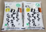 【福岡県産米】ヒノヒカリ10kg 令和3年産[C2236]