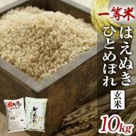SA0674 令和2年産 一等米 はえぬき玄米、ひとめぼれ玄米 計10kg(5kg×2袋) YA