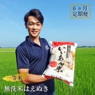 SE0056 【6回定期便】無洗米はえぬき 5kg×6回(計30kg) 農家直送『いいあん米』AG