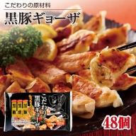 W-2256/黒豚ギョーザ 48個 (12個入×4)原料にこだわった冷凍餃子
