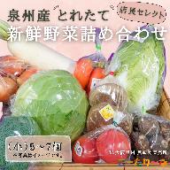 005A178 直売所店長セレクト季節の野菜セット