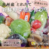 099H139 直売所店長セレクト季節の野菜セット