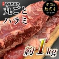 010B441 氷温(R)熟成牛 丸ごとハラミ2本(合計約1kg)