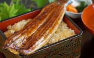 静岡県浜名湖産 鰻の蒲焼き 約110g×2本セット