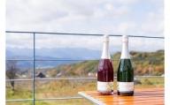 東御市産スパーリングワイン2本セット(巨峰・シャルドネ)