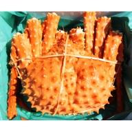 北海道オホーツク産 幻の蟹イバラガニ ボイル約1.5~1.8kg