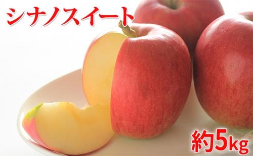 【2021年10月~11月発送 先行予約】長野市産シナノスイート家庭用 約5kg 矢島農園 りんご フルーツ