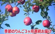 【2021年10月~12月連続お届け】季節のりんご 約5kg 3か月連続お届け(10~12月)