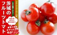 田舎の頑固おやじが厳選!トマト好きにはこれだっぺ!この時期にしかない茨城のフルーツトマト!【令和3年4月から順次お届け】