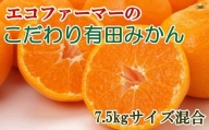 [厳選]エコファーマーのこだわり有田みかん約7.5kg(サイズ混合)※2021年11月中旬より順次発送