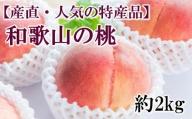 【産直・人気の特産品】和歌山の桃 約2kg・秀選品※2021年6月下旬頃から順次発送