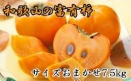 [甘柿の王様]和歌山産富有柿約7.5kgサイズおまかせ※2021年11月上旬から順次発送