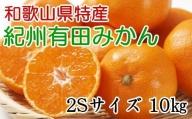 【濃厚】紀州有田みかん約10kg(2Sサイズ・赤秀品)※2021年11月中旬より順次発送