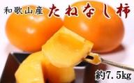 【秋の味覚】和歌山産のたねなし柿約7.5kg(M~2Lサイズおまかせ)※2021年9月下旬から順次発送
