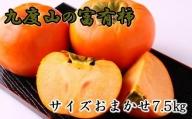 [柿の名産地]九度山の富有柿約7.5kgサイズおまかせ※2021年11月上旬から順次発送