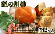 【希少】紀の川柿約2kg(種無し・黒あま柿)秀選品※2021年9月中旬から順次発送