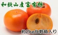 【厳選・産直】和歌山産の富有柿3L・4Lサイズ約2kg(化粧箱入り)※11月上旬から順次発送