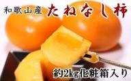 【秋の味覚】和歌山産のたねなし柿3L・4Lサイズ約2kg(化粧箱入り)※9月下旬から順次発送