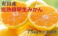 【厳選】紀州有田の完熟極早生みかん約7.5kg(サイズ混合) ※2021年10月中旬より順次発送