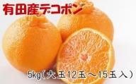 【お味濃厚】紀州有田産の大玉デコポン約5kg(12玉~15玉入り・青秀以上) ※2022年2月上旬より順次発送