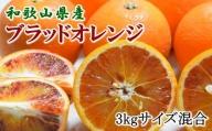 【希少・高級柑橘】国産濃厚ブラッドオレンジ「タロッコ種」3kg ※2021年4月上旬より順次発送