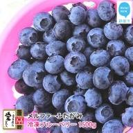 【先行予約】完全無農薬栽培 完熟ブルーベリー1500g(冷凍) 毎年人気の冷凍ブルーベリーです