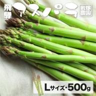 《事前予約》飛騨産アスパラガス Lサイズ 500g 岩塚農園 春 夏 野菜 BBQ