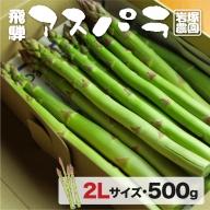 《事前予約》飛騨産アスパラガス 2Lサイズ 500g 岩塚農園 春 夏 野菜 BBQ