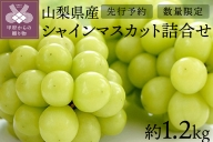 【先行予約】山梨県産シャインマスカット詰合せ1.2kg