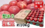 【訳あり】 4~5月 りんご 10kg 青森産 紅玉 スマートフレッシュ貯蔵