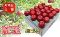 4~5月 りんご 5kg 青森産 紅玉  スマートフレッシュ貯蔵