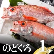 川谷水産厳選!のどぐろ(アカムツ)約1kg