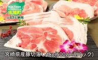 K16_0054 <宮崎県産豚切落し4kg(500g×8パック)>